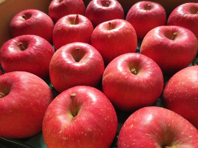 VERY Nice ,VERY Delicious Apple!! りんご好きのためのりんご -あずま農園- 青森県黒石市