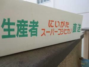 yukihotaru03
