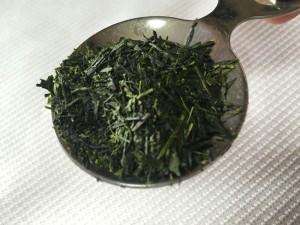 shikou006
