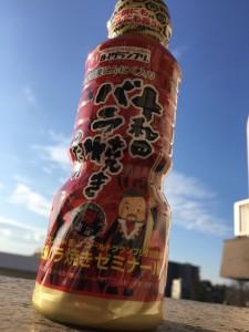 towada001