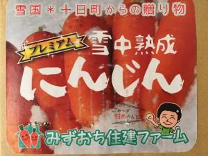 yukisita002