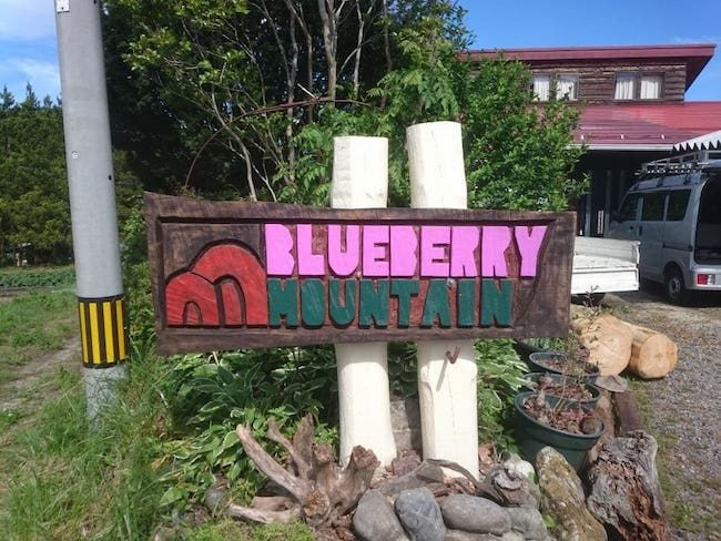 BLUEBERRY_MOUNTAIN_2