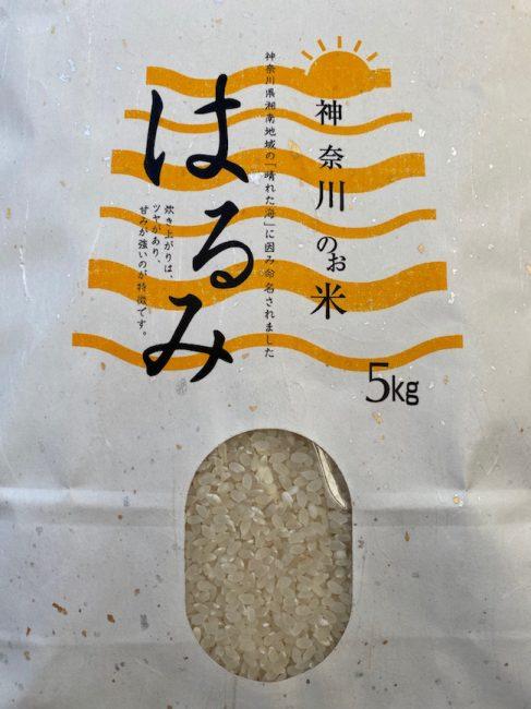 shimoshima1
