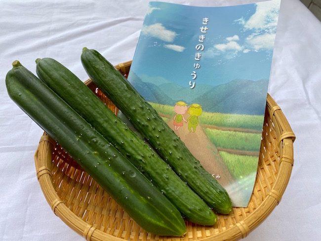 yutakanoen3